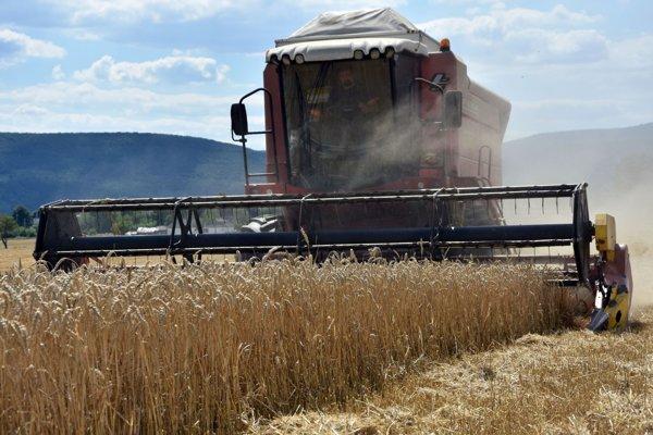 Kombajny v lánoch pšenice.