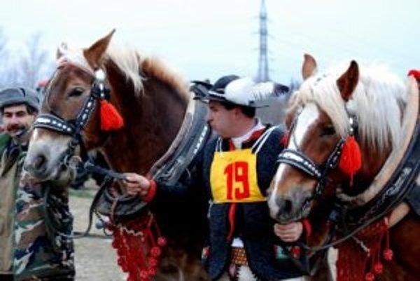 Pred domácim publikom sa s koníkom Maťom predstavil aj pravidelný účastník furmanských súťaží Ľubomír Chromec.