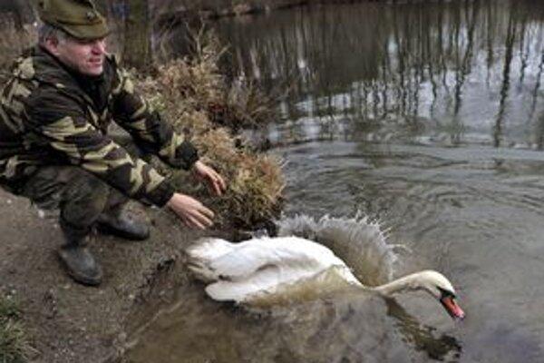 Pre krízu už stretnete v prírode aj menej ochranárov.