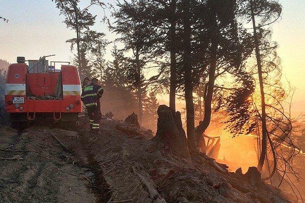 Požiar rúbaniska ohrozoval aj les.