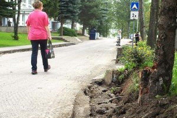 Rozkopávku v tomto prípade pocítila aj časť kmeňa stromu, nielen jeho korene.