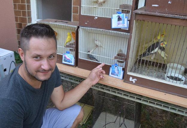 V Kuraľanoch mali výstavu králikov, hydiny, holubov i exotického vtáctva.