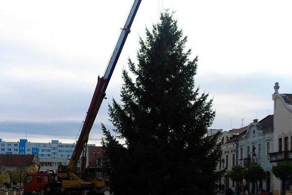 Stromček tento rok priviezli z Nemečiek.