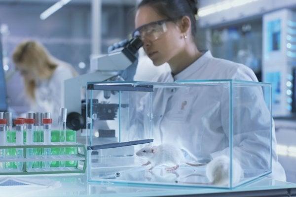 Do boja proti rakovine vyslali nanočastice prezlečené za aminokyseliny.