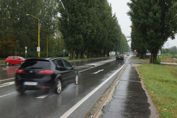 Rozšírenie cesty si vyžiada výrub aleje v jej blízkosti.