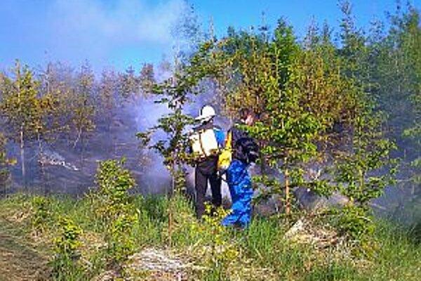 Profesionálom pomáhali aj dobrovoľní hasiči.