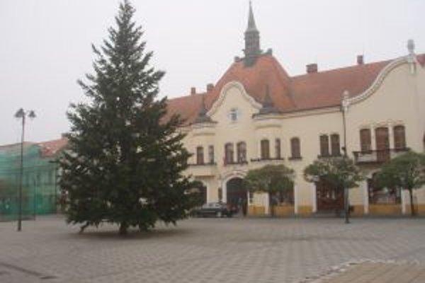 Stromček rozsvieti Mikuláš 4. decembra o 16. hodine.