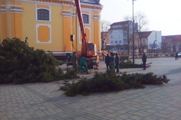 Vianočný stromček odstraňovali v stredu 10. marca. O pár týždňov ho nahradí máj.