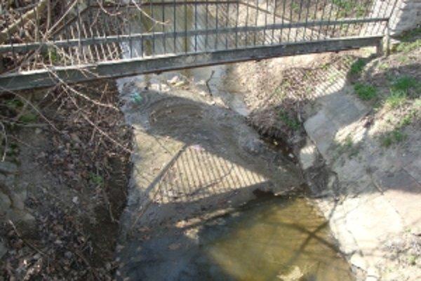 Obsah žumpy pláva v potoku chráneného parku, v ktorom žije stádo koní.