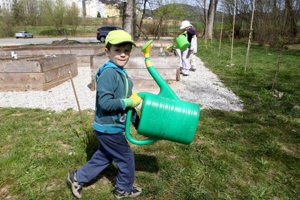 Z rozpočtu by sa mohli podporiť napríklad komunitné záhrady.