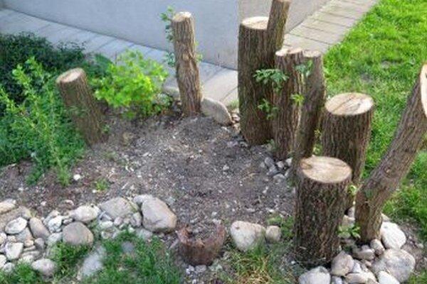 Ostala len spúšť. Zlodej takto zničil živý plot.