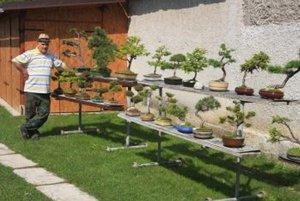 Dušan Junas sa bonsajom venuje už 15 rokov.