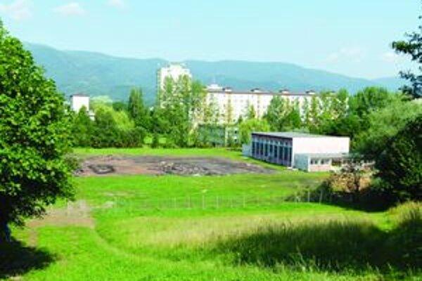 Botanici s aktivistom chcú chrániť rastliny, mesto zas pre mládež vybudovať na starých ihriskách nové.