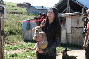 Dobrovoľníci pomáhajú so psím problémom