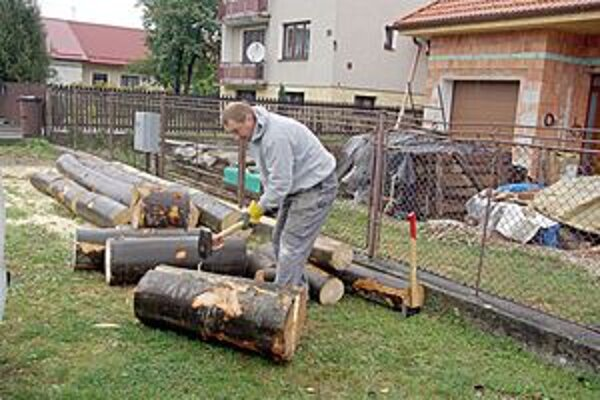 Robo chystal drevo na zimu.