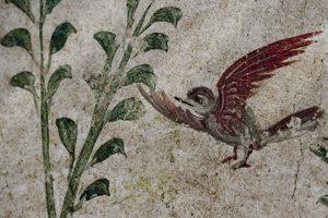 Archeológovia odkrývajú nástennú maľbu v Pompejách.