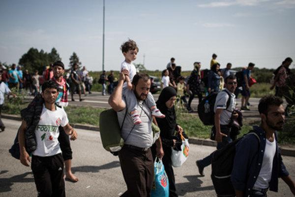 Hoci na prvý pohľad to tak nie vždy vyzerá, podľa štatistík sú utečenci častokrát vysokoškolsky vzdelaní ľudia.