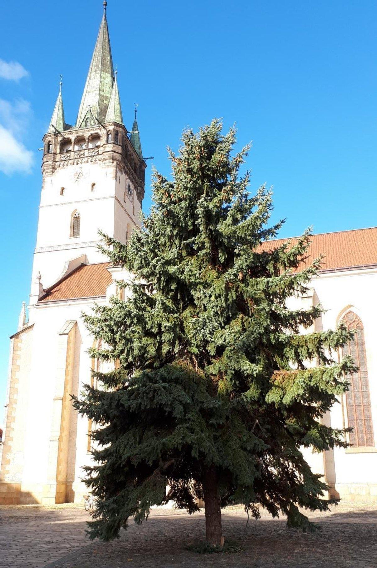 9d2a21ffc3d5 Vianočné trhy v Prešove sa začnú rozsvietením výzdoby - Korzár SME