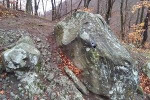 Trúbiaci kameň v Sucháni.