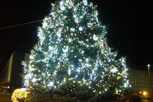 Vianočný stromček v Prievidzi.