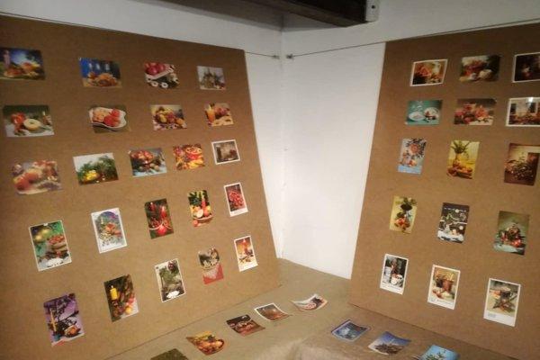 Najbližšie sa výstava vdomčeku bude konať až na jar.