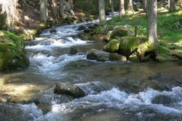 Film Rodinné striebro je o ceste vody z prameňa až do domácností.
