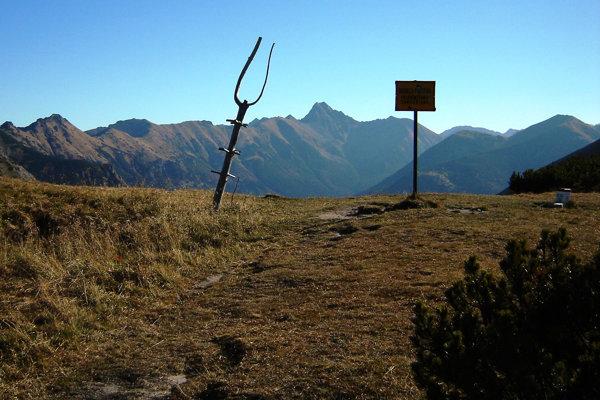 Tomanovské sedlo je široké a trávnaté, nachádza sa v nadmorskej výške 1 686 metrov. Je na slovensko-poľskej štátnej hranici, tvorí začiatok hrebeňa Červených vrchov. Peší turisti do týchto končín majú zakázaný vstup.