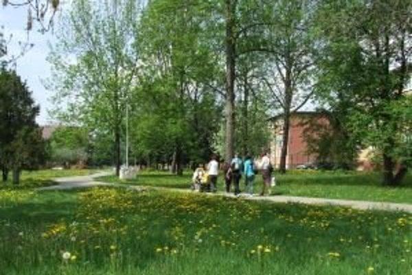 Územie bývalého židovského cintorína na Štúrovej ulici bude mať názov Park spomienok.