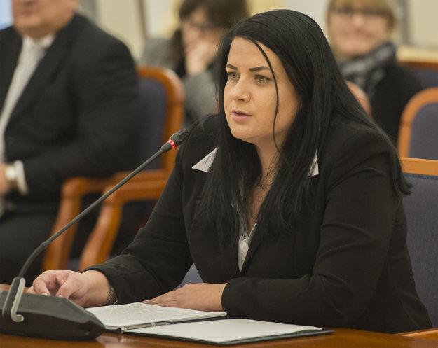Po poslancovi Ficovi sa pred výborom prezentuje Dagmar Fillová.