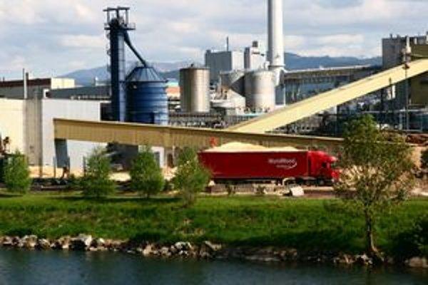 Zvýšenie výroby v celulózke by nemalo mať zásadný vplyv na životné prostredie. Takú podmienku stanovili poslanci.