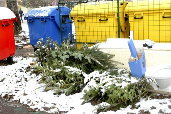 Vianočné stromčeky budú v Prešove zbierať do konca mesiaca.