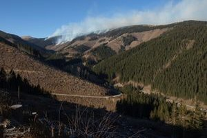 Požiar vznikol na mieste popadaných stromov, ktoré spracovávali lesní robotníci. Presná príčina zatiaľ nie je známa.