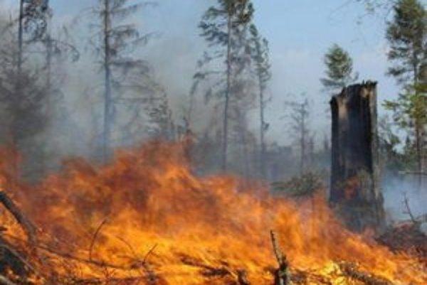 Vo voľnej prírode zakázali hasiči kladenie ohňov. Letné grilovačky musia preto počkať.