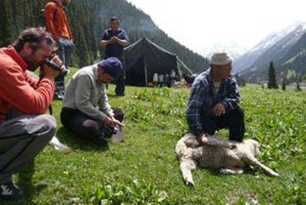 """V Kirgizstane strávil Rasťo Hatiar spolu s piatimi kamarátmi mesiac. """"Nezabudnem  na nádherné hory, na zjazd z Piku Box, na rachot padajúcich lavín, na nomádov, pasúce sa stáda koní, ani na zhulené vrany,"""" povedal Rasťo Hatiar. Na fotografii filmuje kastr"""