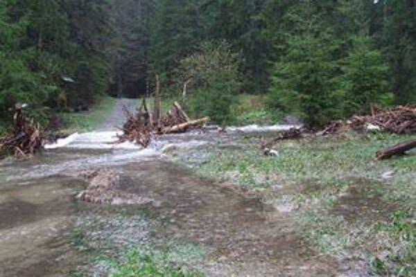 Riečka Demänovka v Demänovskej doline po prudkých dažďoch sa vyliala z koryta. Zaplavila aj niektoré mostíky na nej.