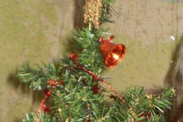 Vianočná dekorácia pripomína, že prichádza advent a potom najkrajšie sviatky roka.