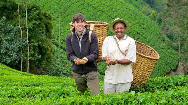 Pestovanie čaju sa stalo hlavným zdrojom obživy miestnych obyvateľov v Keni.