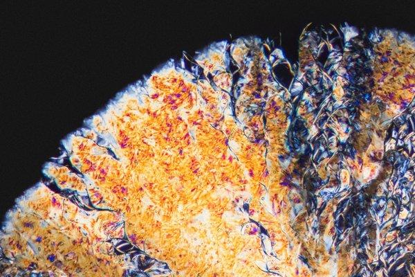 Halucinogénna droga Dimetyltryptamín pod mikroskopom.