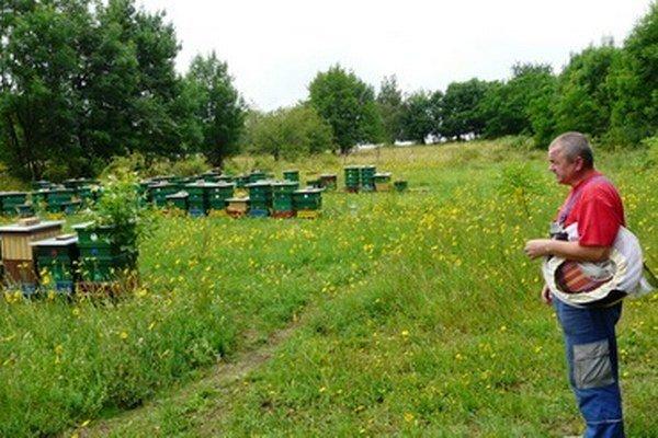 Včelár si v Polichne zvyčajne pochvaľuje silnú jar.
