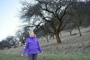 Príbeh starého sadu v Jasenici je veľmi pekný. Anna Krasňanová si zaspomínala aj na otca.