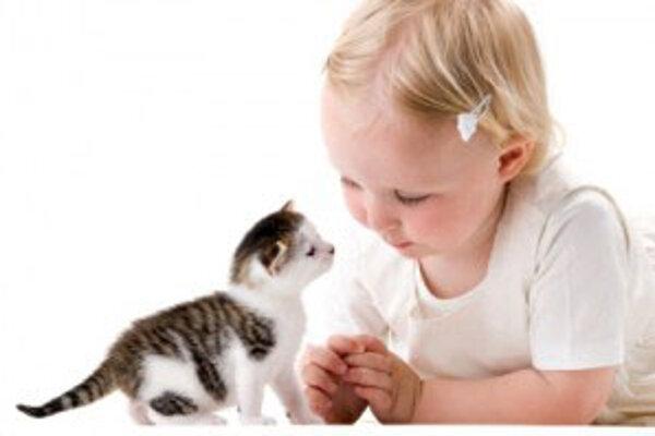 U detí je dôležité vytvoriť pocit zodpovednosti za zvieratko ako za živú bytosť, ktorá je na dieťa odkázaná.