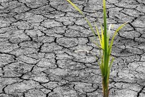 Od augusta minulého roka napršalo v okrese Rimavská Sobota len 232 milimetrov zrážok.