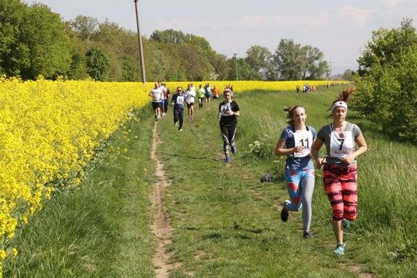 Účastníci behu si užili aj takúto peknú prírodu.