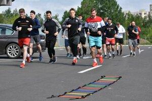 Do letnej prípravy extraligového nováčika sa zapojilo 17 hráčov.