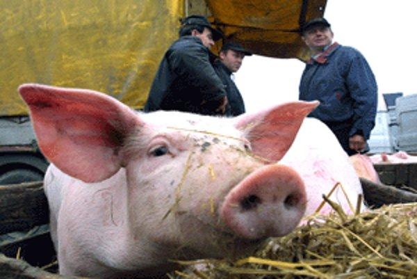 Dlhodobá konzumácia údenín, ako je slanina či klobásky, ktoré zo zabíjačky vzídu, nie je zdraviu prospešná.