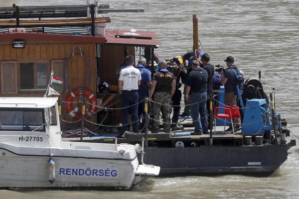 Z Dunaja sa po havárii podarilo zachrániť sedem Kórejčanov.