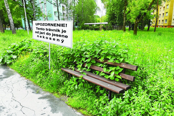 V niektorých lokalitách Košíc sa objavili takéto tabule.