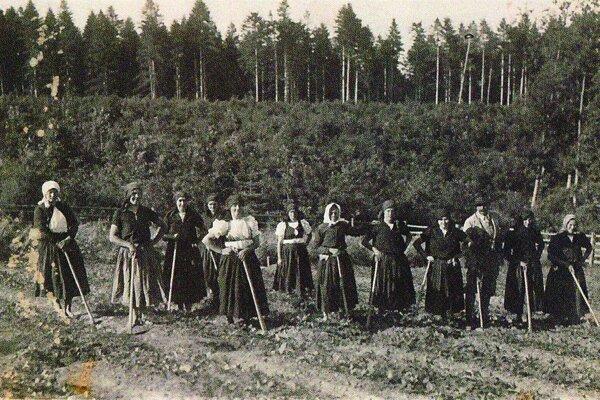 Ženy, ktoré pracovali v tom čase v badínskych lesoch.