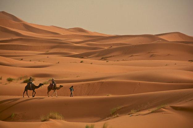 Saharské duny v Erg Chebbi.
