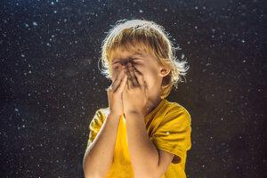 Zloženie prachu je mimoriadne pestré. Na niektoré jeho zložky sú citlivé najmä deti a starší ľudia.